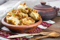 Ukrainian dumplings Stock Images