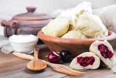 Ukrainian dumplings Royalty Free Stock Photos