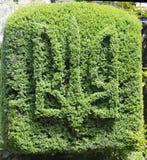 Ukrainian emblem in a bush Stock Photos