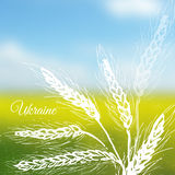 Ukrainian field vector background. Ink hand drawn wheat on blurred photo Royalty Free Stock Image
