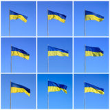 Ukrainian flag Royalty Free Stock Images