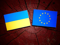 Ukrainian flag with EU flag on a tree stump isolated. Ukrainian flag with EU flag on a tree stump Stock Photos
