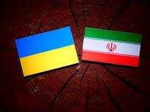 Ukrainian flag with Iranian flag on a tree stump isolated. Ukrainian flag with Iranian flag on a tree stump Royalty Free Stock Photos