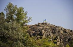 Ukrainian flag in mountain Stock Photo