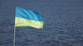Ukrainian flag on nature. On background of blue sky Ukrainian flag stock footage