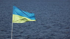 Ukrainian flag on nature. On background of blue sky Ukrainian flag stock video footage