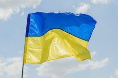 Ukrainian flag on wind Royalty Free Stock Image