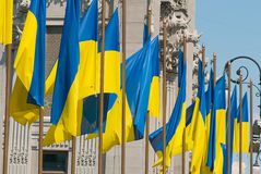 Ukrainian flags Stock Photography