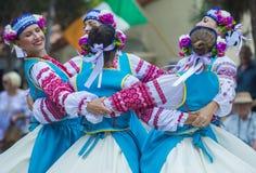 Ukrainian folk dancers Royalty Free Stock Photography