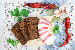 Ukrainian food. Bacon on rye bread. Beautiful still life. Background of spices. Spice on marble. Ukrainian food. Bacon on rye bread. Beautiful still life Stock Photos