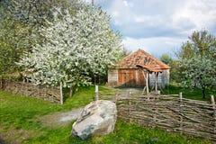Ukrainian garden Stock Images