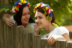 Ukrainian girl in national clothes. Ukrainian beautiful girl in national clothes Royalty Free Stock Image
