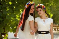Ukrainian girl in national clothes. Ukrainian beautiful girl in national clothes Royalty Free Stock Photos