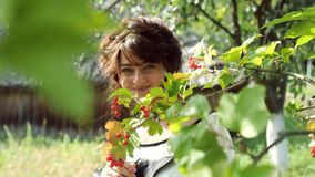 Ukrainian girl playfully smiling at the camera between the branches of viburnum. Ukrainian girl playfully smiling at the camera between the branches of red stock video footage