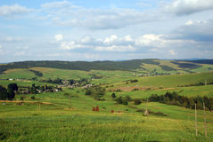 Ukrainian green plains Royalty Free Stock Image