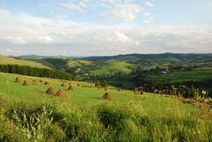 Ukrainian green plains Royalty Free Stock Photos