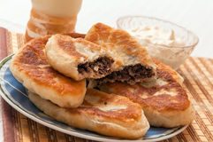 Ukrainian homemade meat pies on a plate Royalty Free Stock Photo
