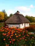 Ukrainian house in Pirogovo summer landscape Royalty Free Stock Image