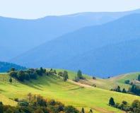 Ukrainian landscape. Stock Image