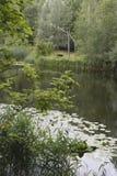 Ukrainian landscape with a lake Stock Photos