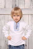 Ukrainian little boy Stock Photos