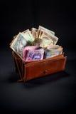 Ukrainian money in the wallet Stock Image