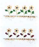 Ukrainian national patterns Royalty Free Stock Images