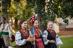 Ukrainian national wedding Royalty Free Stock Image