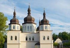 Ukrainian Orthodox Church and Domes Stock Image