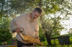 Ukrainian peasant hard working in own bee yard Stock Photos