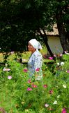 A Ukrainian peasant tends her Garden Royalty Free Stock Image