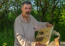 Ukrainian peasant working in own bee yard Royalty Free Stock Images