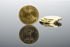Ukrainian real coin Hryvna Stock Photography