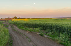 Ukrainian rural landscape with full moon Royalty Free Stock Photos