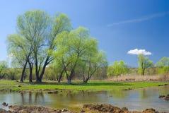 Ukrainian rural landscape in spring season Stock Photography