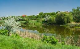Ukrainian rural summer landscape Royalty Free Stock Image
