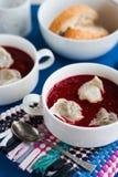 Ukrainian and russian national beetroot borsch with dumplings cl Stock Images