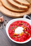 Ukrainian and russian national red borsch Stock Photos