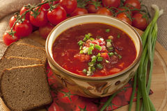 Ukrainian and russian national red borscht of vegetables and meat Royalty Free Stock Images