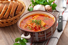Ukrainian and russian national red soup borsch Stock Image