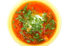 Ukrainian and russian national red soup - borscht Stock Photography