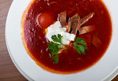 Ukrainian and russian red-beet soup (borscht) Royalty Free Stock Photo