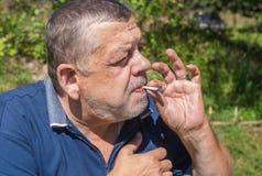 Ukrainian senior peasant smoking cigarette rolled by himself Stock Image