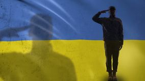 Ukrainian soldier silhouette saluting against national flag, military reform. Stock footage stock video footage