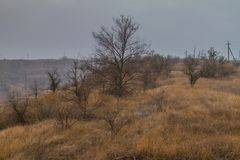 Ukrainian steppe in the fall Stock Photo