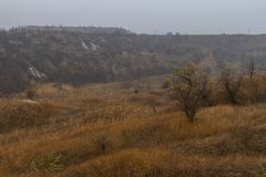 Ukrainian steppe in the fall Royalty Free Stock Photography