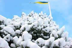 Ukrainian or Swedish winter Royalty Free Stock Photography