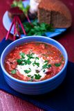 Ukrainian traditional borsch. Russian vegetarian red soup in blue bowl on red wooden background. Borscht, borshch with beet. Clo royalty free stock image