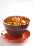 Ukrainian traditional borscht Royalty Free Stock Image