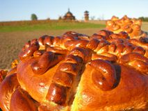 Ukrainian traditional wheat bread. Round loaf and ukrainian landscape on background Royalty Free Stock Images